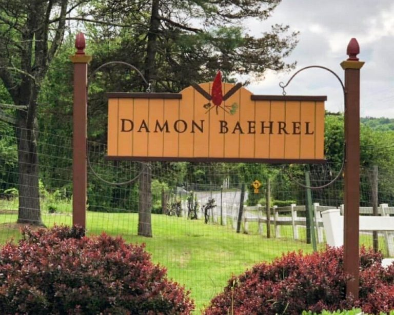 Damon Baehrel Sign