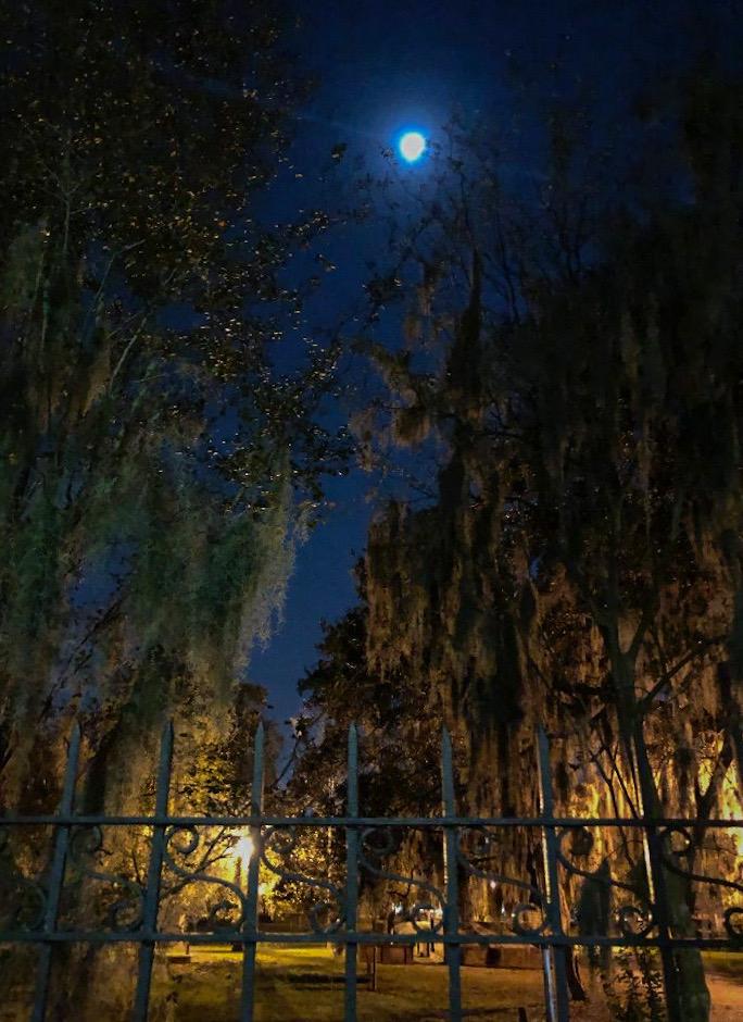 Savannah Colonial Park Cemetery by Moonlight