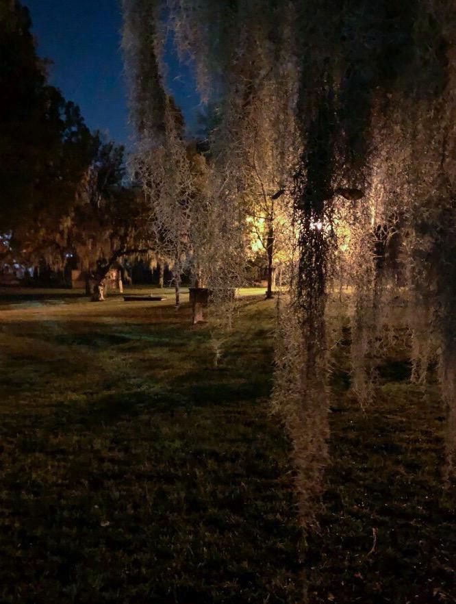 Savannah Colonial Park Cemetery at Night