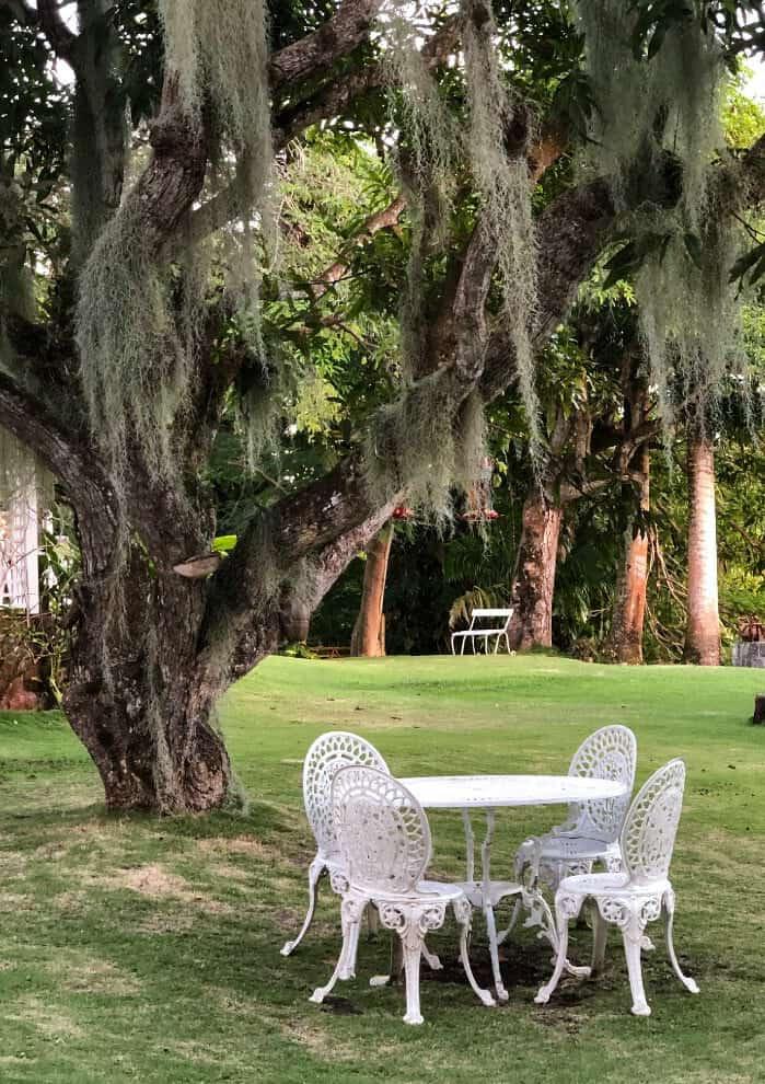 Ground at the Hermitage Nevis