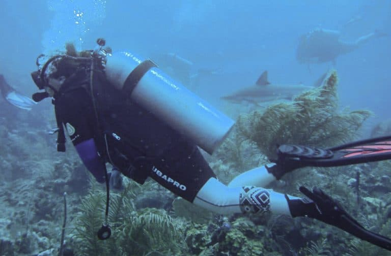 Amber scuba diving with reef sharks in St Kitts