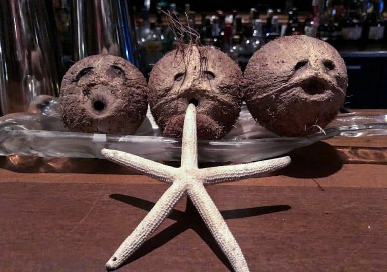Coconuts on the bar at Pavilion St Kitts