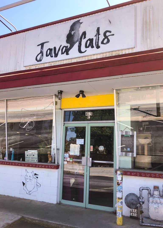 Java Cats Cat Cafe Grant Park