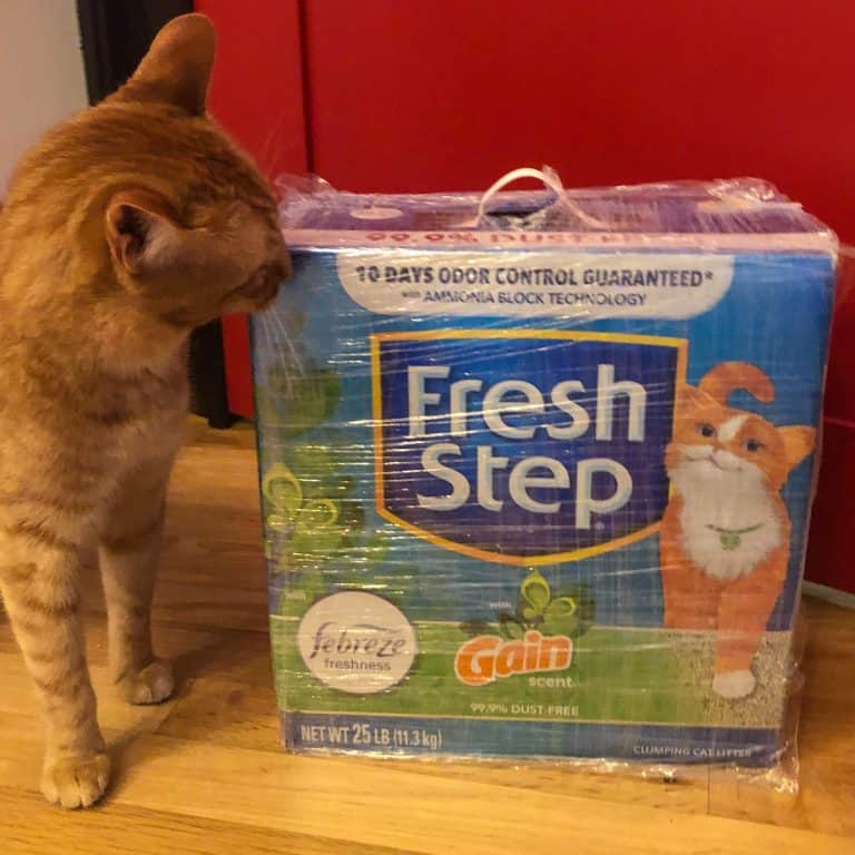 Fresh Step with Gain Cat Litter
